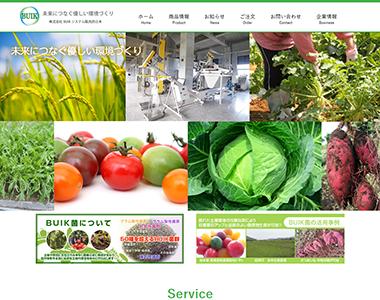 ホームページ 株式会社BUIKシステム販売西日本
